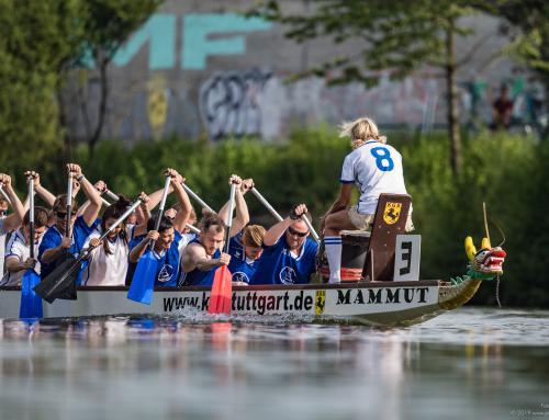 Die Drachen sind los auf dem Neckar